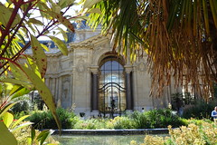 Garden @ Petit Palais @ Paris