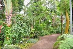 Botanischer Garten Jena 2017