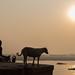 MEDITATION. Varanasi by Cathy Le Scolan-Quéré Photographies