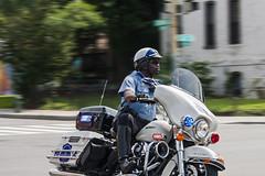 Metropolitain Police  (1)