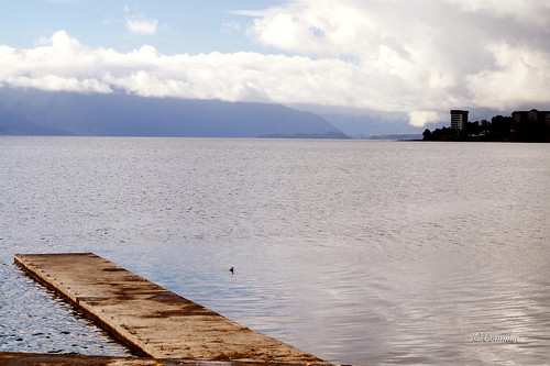 sony alpha chile sonyflickraward otoño autumn nature naturaleza paisaje landscape lago lake villarrica
