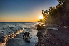 Morning at Lake Erie Bluffs