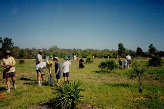 Cubs planting in the Carnarvon area 1997