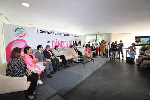 Comisión para la Igualdad de Género 24/may/17