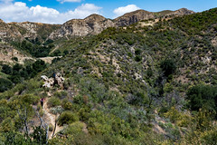 Upper Placerita Canyon