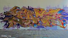Den Haag Graffiti ZACE