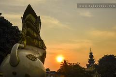 Shwedagon, Yangoon.