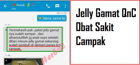 Solusi Tepat Pengobatan Secara Alami Dengan QNC Jelly Gamat