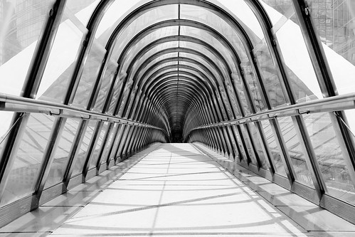 Japan Bridge in black and white: part 2