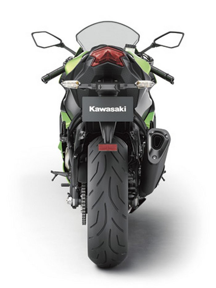 Kawasaki ZX-6 R 636 2013 - 18