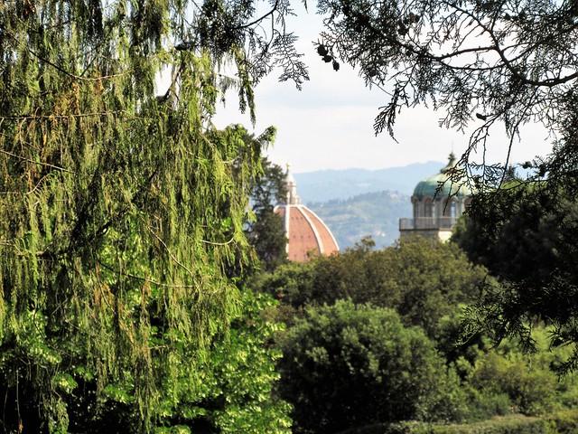Pitti Palace_Boboli Gardens_Florence_Italy_3219