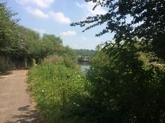 tow path near Bristol