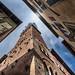 Torre Guinigi by CARLORICCI