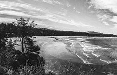 Reworked - Meares Pano BW
