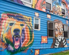 Colorful Building Mural, Stapleton, Staten Island, New York City