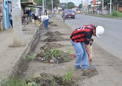 Realizan limpiezas en la avenida Marcos Aray Dueñas