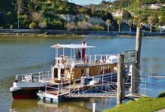wairua steamboat
