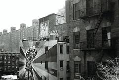 The High Line, New York