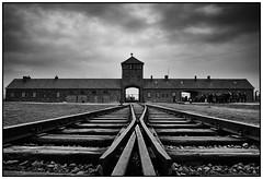 2016-11 Auschwitz