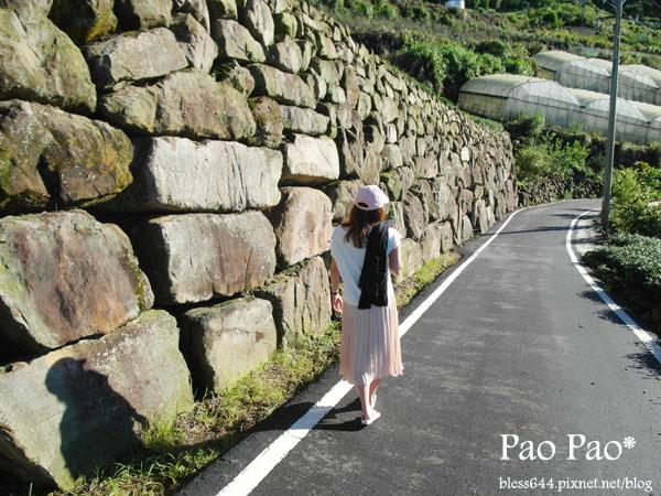 二延平步道-巨石駁坎
