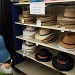 Hats galore at B. Lodge & Co. in Albany, NY