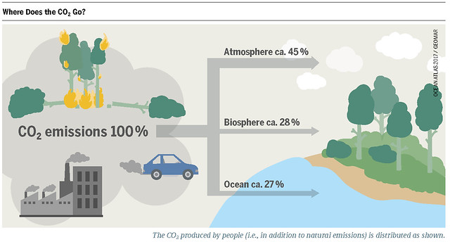 Shares of CO2 distribution in the atmosphere, biosphere and ocean Graph: Ocean Atlas 2017, Petra Böckmann/Heinrich Böll Foundation