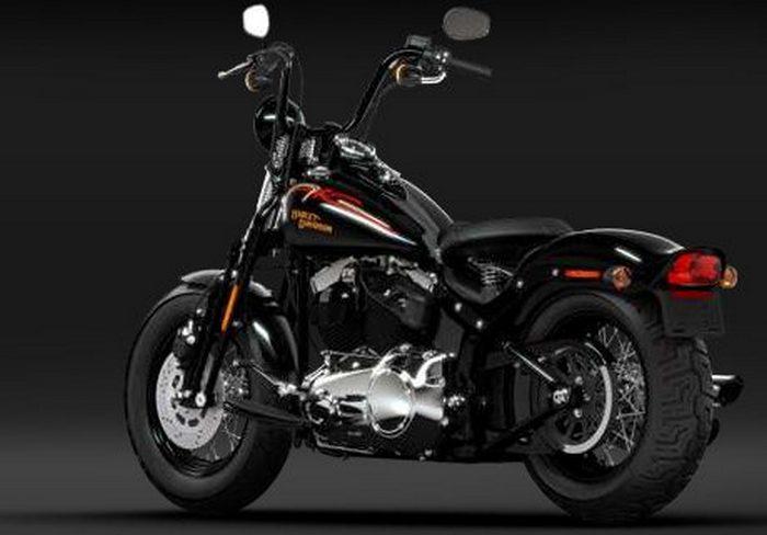 Harley-Davidson FLSTSB 1584 SOFTAIL CROSS BONES 2008 - 12