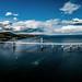 Kessock Bridge Panorama by James MacRae