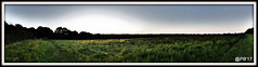 5 a.m. Panorama.