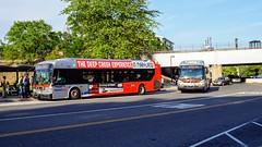 WMATA Metrobus 2011 New Flyer Xcelsior XDE40 #7104 & WMATA Metrobus 2009 New Flyer DE40LFA #6372