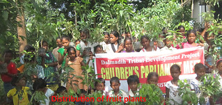 Proyecto Dalmadih (India) (6)