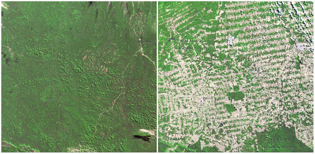 Sự thay đổi cảnh quan trong vòng 100 năm trên toàn thế giới - egolandscape 05