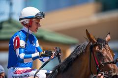 Winners - With Every Hope & Jockey Sasha Risenhoover