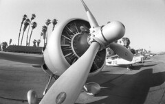 Fisheye Airplane At Flabob Airport