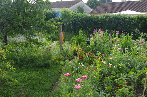 Jardin L'Aubanie, printemps
