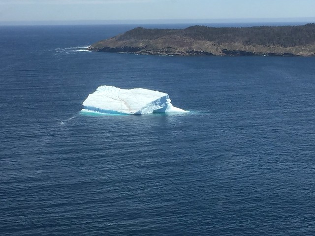 First iceberg observation of the year near St. John's, Newfoundland. Photo Credit: USFWS
