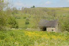 RuralStaffs