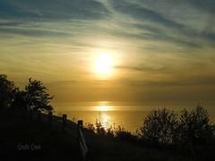 Golden hour - Lake Erie Bluffs
