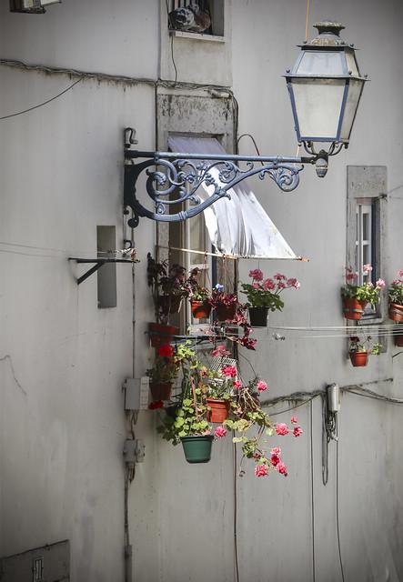 Lisbon - Street
