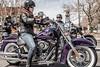 Harley-Davidson 1690 SOFTAIL DELUXE FLSTN 2012 - 20