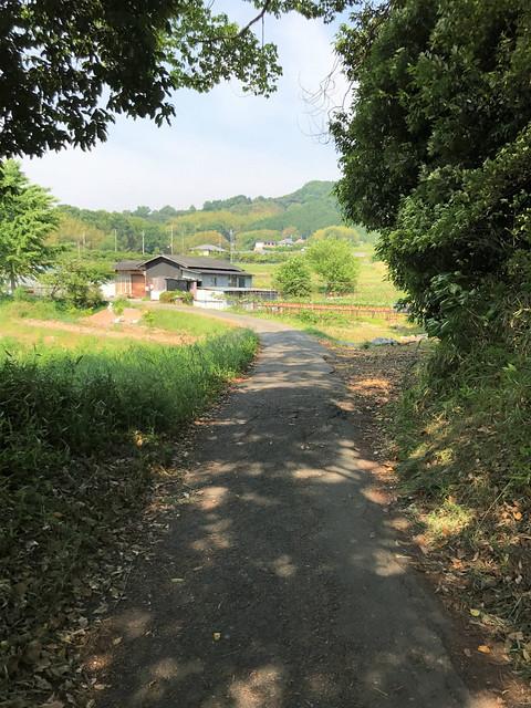 isonokamijingu06