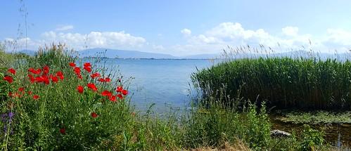 20170604100553 macedonia македонија mazedonien macédoine panorama lakeohrid охридскоезеро liqeniiohrit liqeniipogradecit