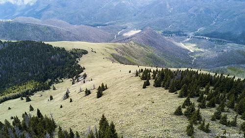 uploadedviaflickrqcom meadow mountains peaks canyon forest chicomamountain jemezmountains newmexico djimavicpro