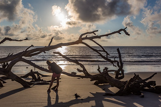 Photographer at Driftwood Beach Jekyll Island