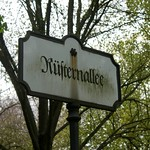 1. Die Rüsternallee im Berliner Tiergarten