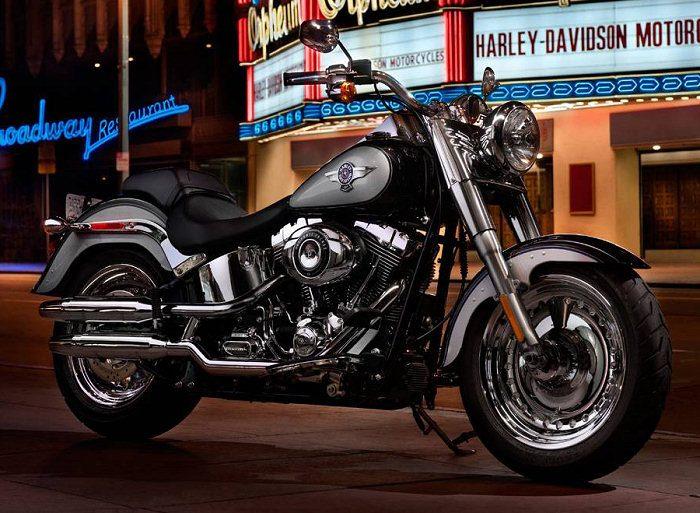 Harley-Davidson 1690 SOFTAIL FAT BOY FLSTF 2014 - 14