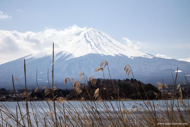 Monte Fuji dal lago Kawaguchi