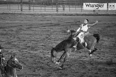 20170620_F0001: A battle between horse and cowboy