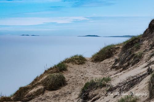 Arcadia Dunes