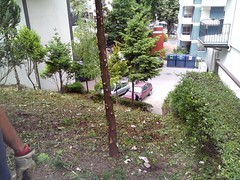 IMG_20170525_155711